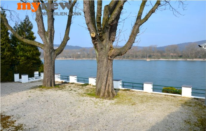 mynew-immobilien-bonn-bonn-plittersdorf-wohnung-rheinlage-terrasse-rheinblick